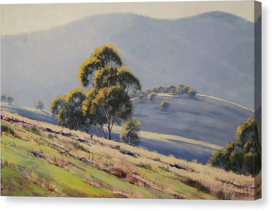 Australian Canvas Print - Summer Landscape by Graham Gercken