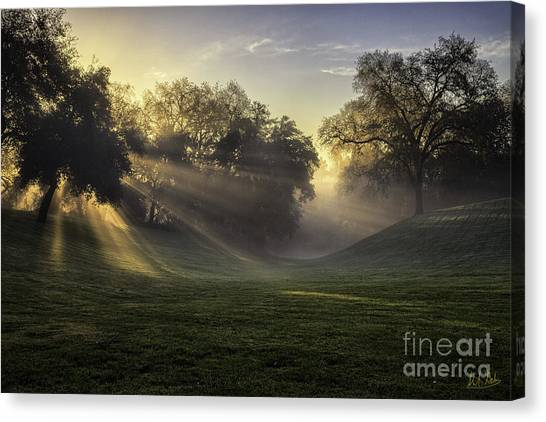 Sunrise Among The Oaks Canvas Print