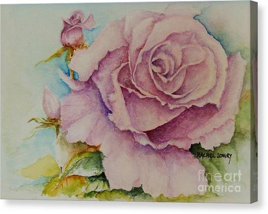 Susan's Rose Canvas Print