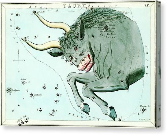 Taurus Constellation Canvas Print by Royal Astronomical Society/science Photo Library