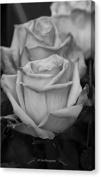 Tea Roses In Black And White Canvas Print