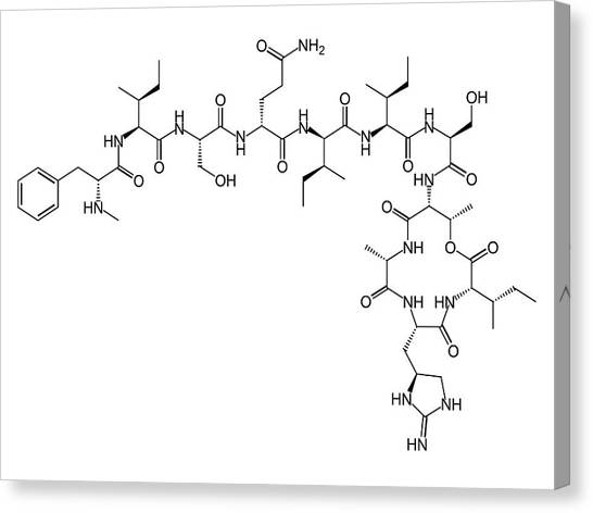 Teixobactin Antibiotic Structure Formulae Canvas Print by Alfred Pasieka