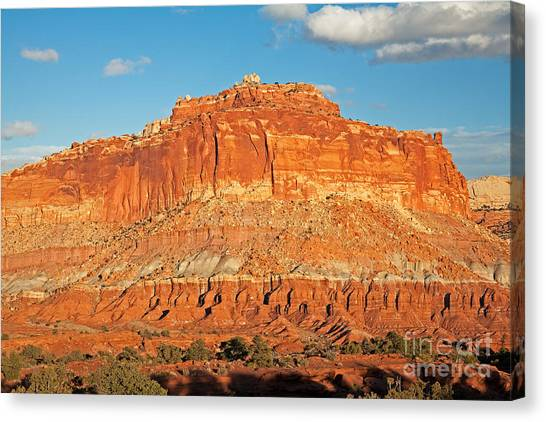 The Goosenecks Capitol Reef National Park Canvas Print
