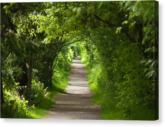 The Green Tunnel Canvas Print