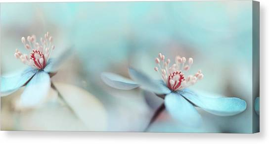 Romantic Flower Canvas Print - The Two Of Us by Heidi Westum
