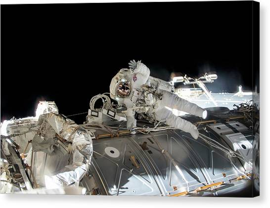 Emus Canvas Print - Tim Peake's Spacewalk by Nasa