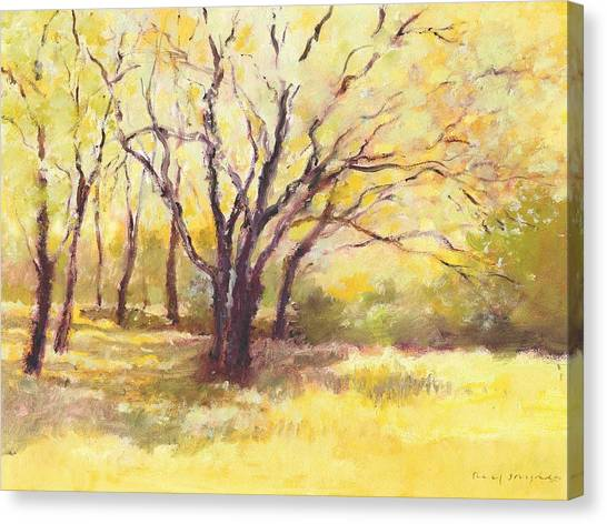 Trees2 Canvas Print
