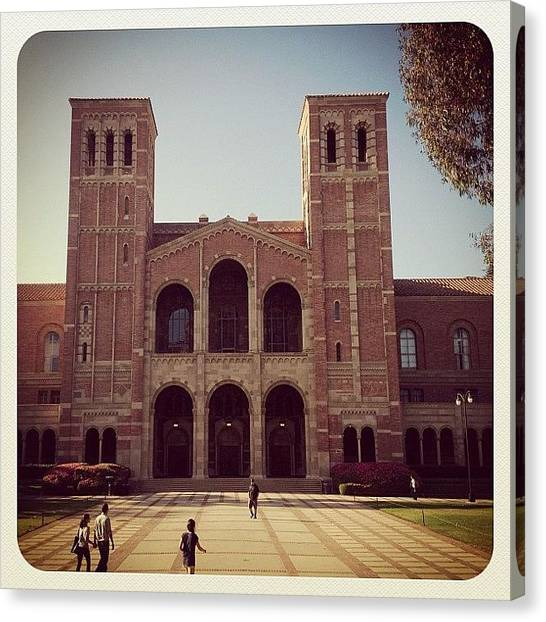Ucla Canvas Print - Ucla by Karmyn Tyler Cobb