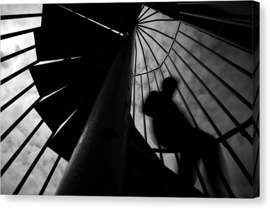 Spiral Canvas Print - Untitled by Ali Ayer