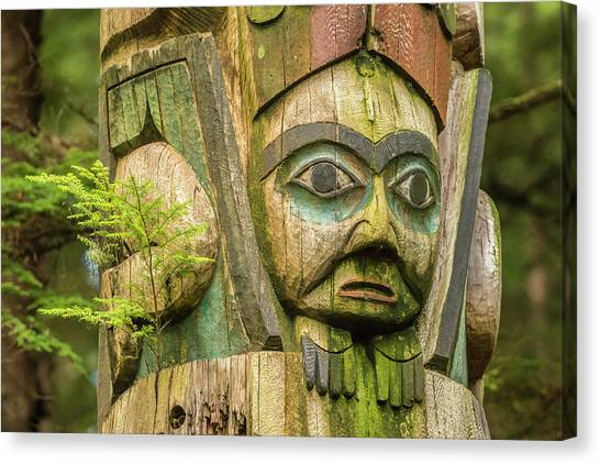 Tongass National Forest Canvas Print - Usa, Alaska, Prince Of Wales Island by Jaynes Gallery