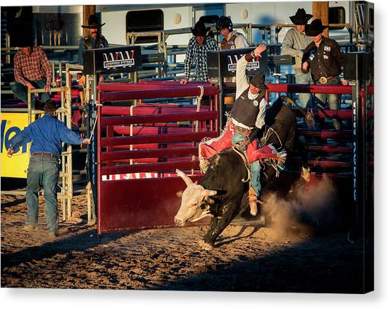 Bull Riding Canvas Print - Usa, Arizona, Buckeye, Hellzapoppin by Jaynes Gallery