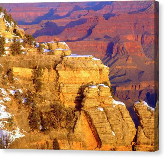 Petrified Forest Canvas Print - Usa, Arizona, Grand Canyon National by Jaynes Gallery