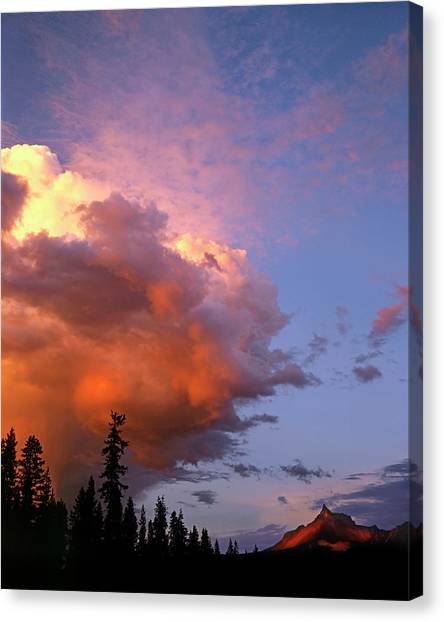 Cloud Forests Canvas Print - Usa, Oregon, Umpqua National Forest by Jaynes Gallery