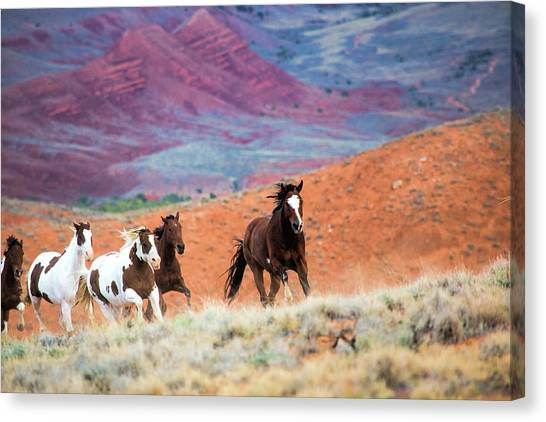 Mountain Cliffs Canvas Print - Usa, Wyoming, Shell, Big Horn by Terry Eggers
