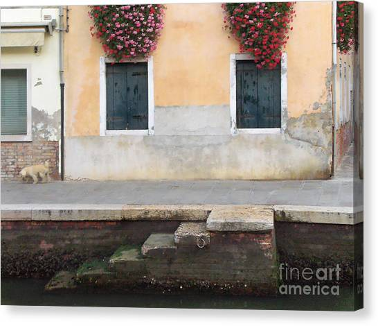 Venice Canal Shutters With Dog And Flowers Horizontal Canvas Print