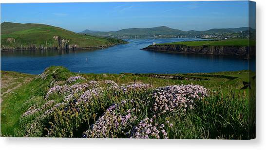 View Over Dingle Bay Canvas Print