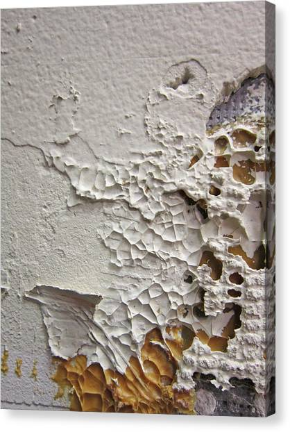 Wall Abstract Canvas Print by Mary Bedy