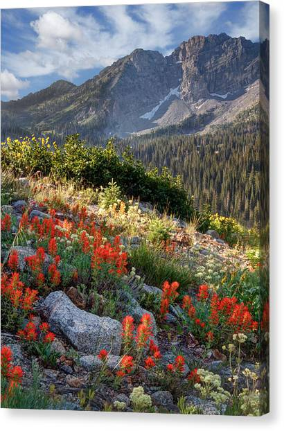 Wasatch Mountains Of Utah Canvas Print