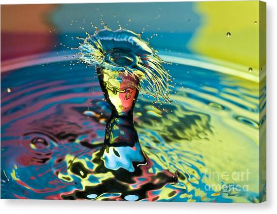 Water Splash Having A Bad Hair Day Canvas Print
