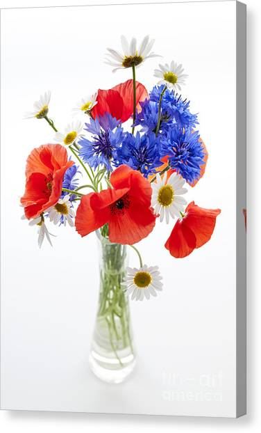 Bachelor Canvas Print - Wildflower Bouquet by Elena Elisseeva