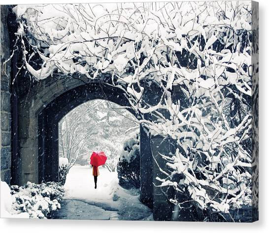 Winter's Lace Canvas Print