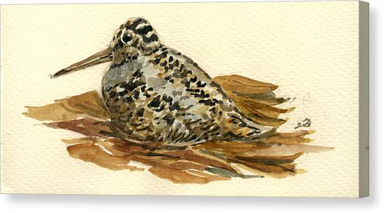 Woodcock Canvas Print - Woodcock by Juan  Bosco