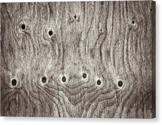 Ply Canvas Print - Wooden Background by Tom Gowanlock