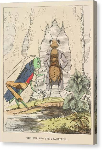Grasshoppers Canvas Print - Aesop Fables by British Library