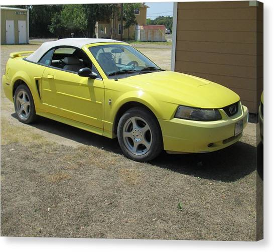2003 Mustang Canvas Print by Rosalie Klidies