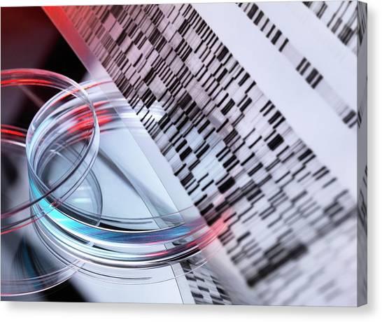 Biochemical Canvas Print - Genetic Research by Tek Image