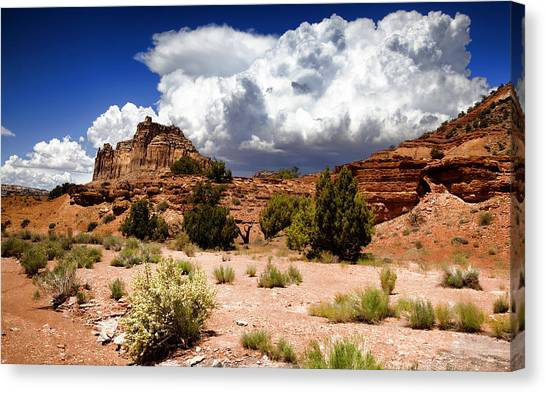 San Rafael Swell Canvas Print