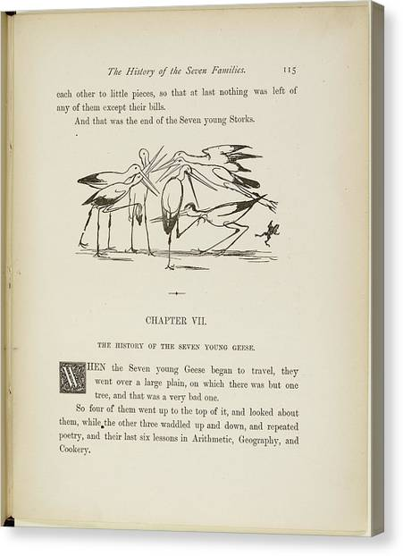 Storks Canvas Print - A Book Of Nonsense By Lear by British Library