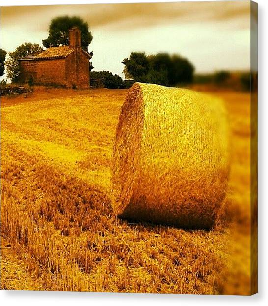 Harvest Canvas Print - Instagram Photo by Ian James