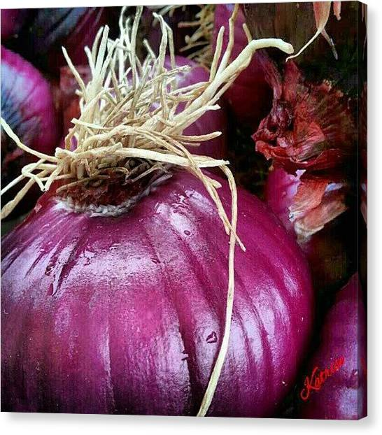 Onions Canvas Print - Instagram Photo by Katrise Fraund