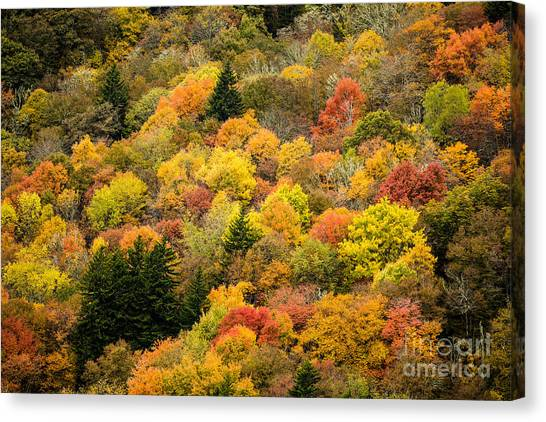 2679 Blue Ridge Parkway Canvas Print by Stephen Parker