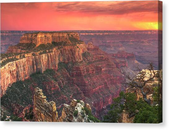 North Rim Canvas Print - Grand Canyon National Park by Michele Falzone
