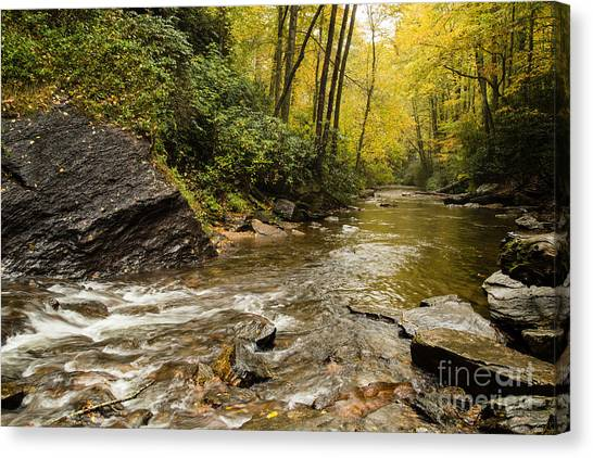 2725 Looking Glass Falls Canvas Print by Stephen Parker