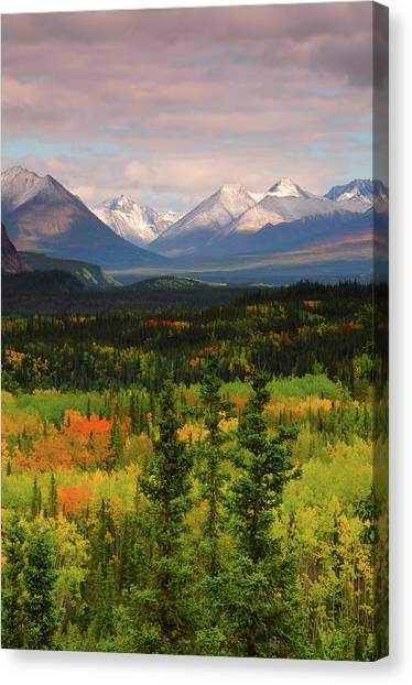 Tundras Canvas Print - Alaska Range In Autumn, Taiga, Tundra by Michel Hersen