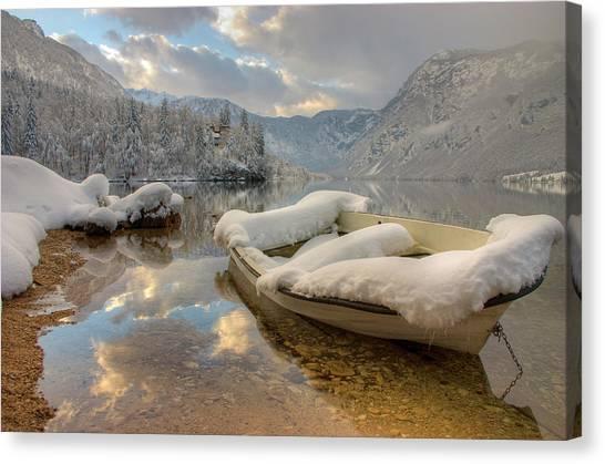 Alpine Clarity Canvas Print by Ian Middleton