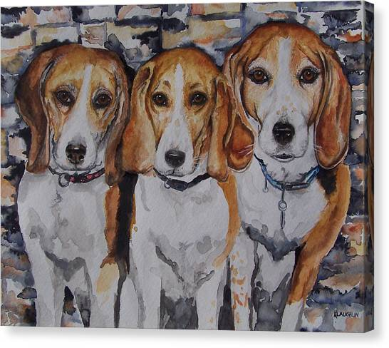 3 Amigo Beagles Canvas Print