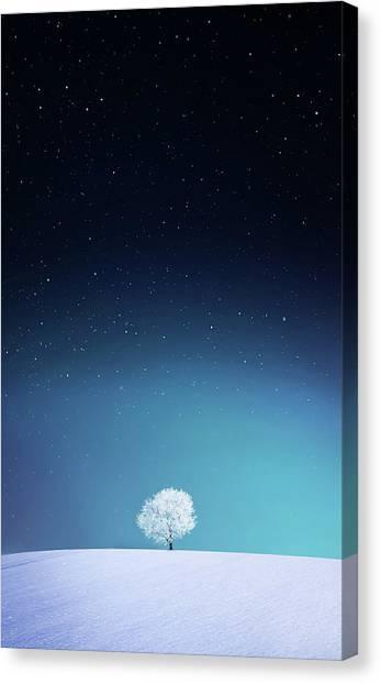 Winter Sky Canvas Print - Apple by Bess Hamiti