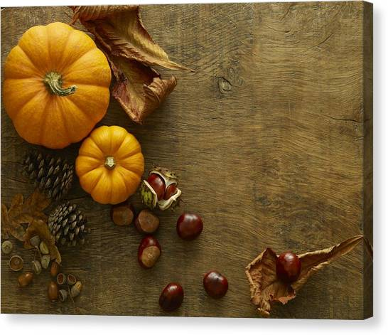 Autumn Still Life Canvas Print by Science Photo Library