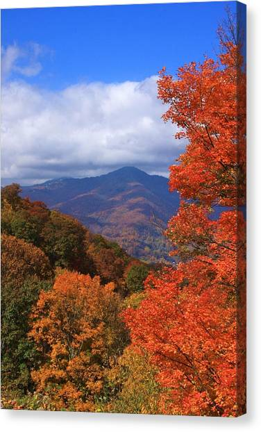 Blue Ridge Fall Canvas Print