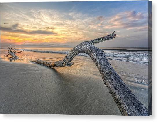 Bough In Ocean Canvas Print