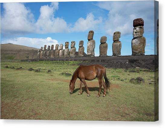 Easter Island Canvas Print - Chile, Easter Island, Hanga Nui by Cindy Miller Hopkins