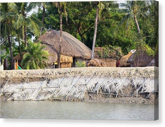 Ganges Canvas Print - Coastal Flood Defences In The Sunderbans by Ashley Cooper