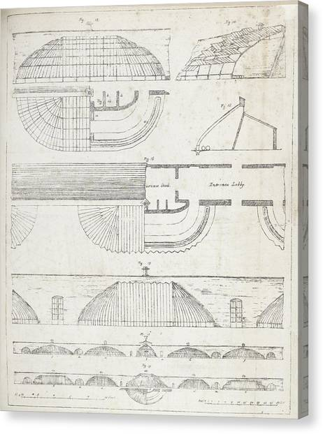 Curvilinear Canvas Print - Cross Sections Of Greenhouses by British Library