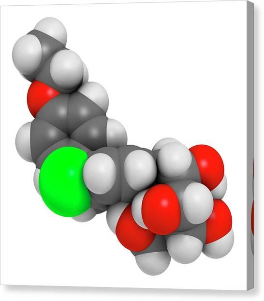 Diabetes Canvas Print - Dapagliflozin Diabetes Drug Molecule by Molekuul