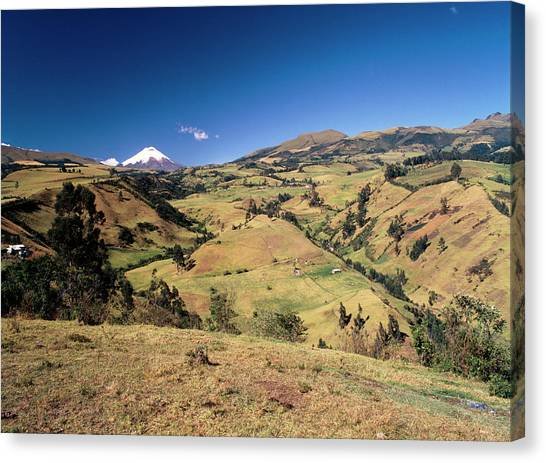 Cotopaxi Canvas Print - Deforestation by Dr Morley Read/science Photo Library