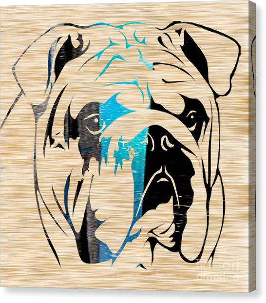 English Bull Dogs Canvas Print - English Bulldog by Marvin Blaine